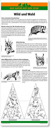 C21 Wild und Wald