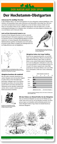 A09 Der Hochstamm-Obstgarten