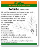 D63 Roteiche