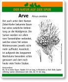 D83 Arve