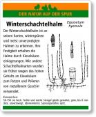 E76 Winter-Schachtelhalm